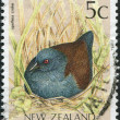 Stock Photo: NEW ZEALAND - CIRC1991: Postage stamps printed in New Zealand, shows Spotless Crake (Porzantabuensis), circ1991