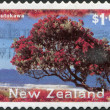NEW ZEALAND - CIRCA 1996: Postage stamps printed in New Zealand, shows a Christmas tree - Pohutukawa tree (Metrosideros excelsa), circa 1996 - Stock Photo