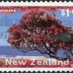 NEW ZEALAND - CIRCA 1996: Postage stamps printed in New Zealand, shows a Christmas tree - Pohutukawa tree (Metrosideros excelsa), circa 1996 — Stockfoto