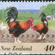 :NEW ZEALAND - CIRCA 1995: A stamp printed in New Zealand, shows farm animals - roosters, circa 1995 — Stock Photo