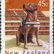 NEW ZEALAND - CIRCA 2006: Postage stamps printed in New Zealand, is dedicated to New Year 2006 (Year of the Dog), shows a Labrador retriever, circa 2006 — Stock Photo #11973605
