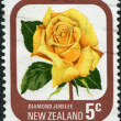 "NEW ZEALAND - CIRCA 1975: A stamp printed in New Zealand, shows the sort of roses ""Diamond jubilee"", circa 1975 — Stock Photo"