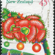NEW ZEALAND - CIRCA 1993: A stamp printed in New Zealand, is dedicated to Christmas, is depicted Flowers from pohutukawa tree, circa 1993 — Foto de Stock