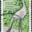 NIGERIA - CIRCA 1993: A stamp printed in Nigeria, shows Stanley Crane (Grus paradisea), circa 1993 — Stock Photo