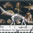 GERMANY - CIRCA 2010: A stamp printed in Germany, is dedicated to the 200th anniversary of the Museum of Natural History in Berlin, shows a dinosaur skeleton and a variety of animals, circa 2010 — Stock Photo