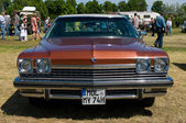 """PAAREN IM GLIEN, GERMANY - MAY 26: Car Buick LeSabre, """"The oldtimer show"""" in MAFZ, May 26, 2012 in Paaren im Glien, Germany — Foto Stock"""