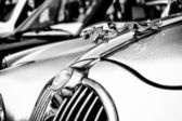 """PAAREN IM GLIEN, GERMANY - MAY 26: The emblem of the car Jaguar (Black and White), """"The oldtimer show"""" in MAFZ, May 26, 2012 in Paaren im Glien, Germany — Stock Photo"""