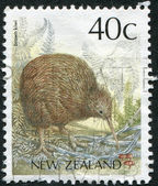 NEW ZEALAND - CIRCA 1991: Postage stamps printed in New Zealand, shows the North Island Brown Kiwi, circa 1991 — Stockfoto