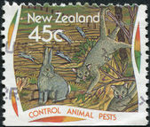 NEW ZEALAND - CIRCA 1995: A stamp printed in New Zealand, dedicated to the Control animal pests, circa 1995 — Stock Photo