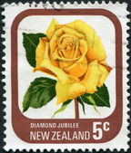"NEW ZEALAND - CIRCA 1975: A stamp printed in New Zealand, shows the sort of roses ""Diamond jubilee"", circa 1975 — 图库照片"