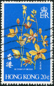 HONG KONG - CIRCA 1977: A stamp printed in the Hong Kong shows Buttercup Orchid, circa 1977 — Stock Photo