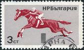 Bulgarie - circa 1965 : un timbre imprimé en bulgarie, dépeint le saut d'obstacles, circa 1965 — Photo