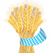 Sheaf of wheat ears with ribbon in bavarian colors — Stock Vector