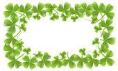 Clover leafs frame — Stock Vector
