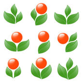 Set of plant icons. Vector-Illustration — Stock Vector