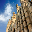 Cathedral of Palma — Stock Photo #11944678