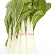 Stock Photo: Raw Bok Choy
