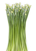 Fresh Garlic Chives — Stock Photo