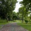 Trail in the park. — Stock Photo #11995071