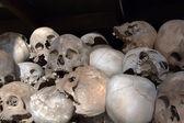 Un tas de crâne — Photo