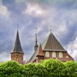 Cathedral in Kaliningrad — Stock Photo #11874010