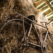 Rusty vintage bicycle in a barn — Stock Photo