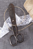 Scissors and Lace — Stockfoto