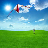Boy playing kite against the beautiful sky and clouds. — Stock Photo