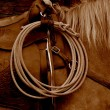 Stock Photo: Lasso hanging on western saddle