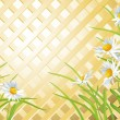 Stock Vector: Daisies on background of wooden trellis
