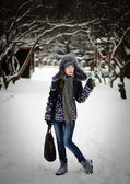 Beauty in a winter park — Stock Photo
