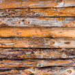 Pine wood wall texture - Foto Stock