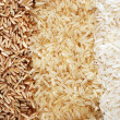Three rows of rice varieties - brown, wild and white. - Stock Photo