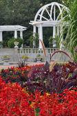 ウェディング ガーデン — ストック写真