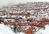 Snowy canyon wall — Stock Photo