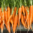 Fresh garden carrots — Stock Photo