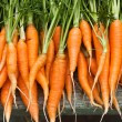 Stock Photo: Fresh garden carrots