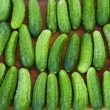 Fresh cucumbers — Stock Photo #11970763