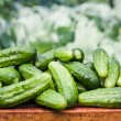 Fresh cucumbers — Stock Photo #11970804