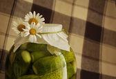 Pickles met madeliefjes — Stockfoto