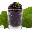 A glass of blackcurrant - Stock Photo