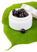 Kozmetik siyah frenk üzümü — Stok fotoğraf