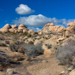 Stock Photo: JoshuTree National Park
