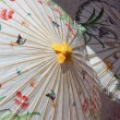 Silk Umbrellas — Stock Photo