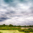 Stock Photo: Storm Clouds over the Marsh