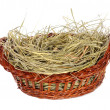 Basket with hay isolated - Stock Photo