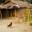 Stock Photo: Nepalese farm