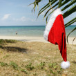 Royalty-Free Stock Photo: Tropical santa claus hat