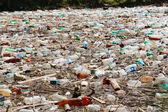 Plastic bottle pollution — Stock Photo