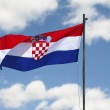 Flag of Croatia waving in the wind in front of sky background — Stock Photo #12372677
